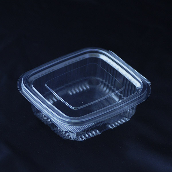 250cc Disposable Plastic Container