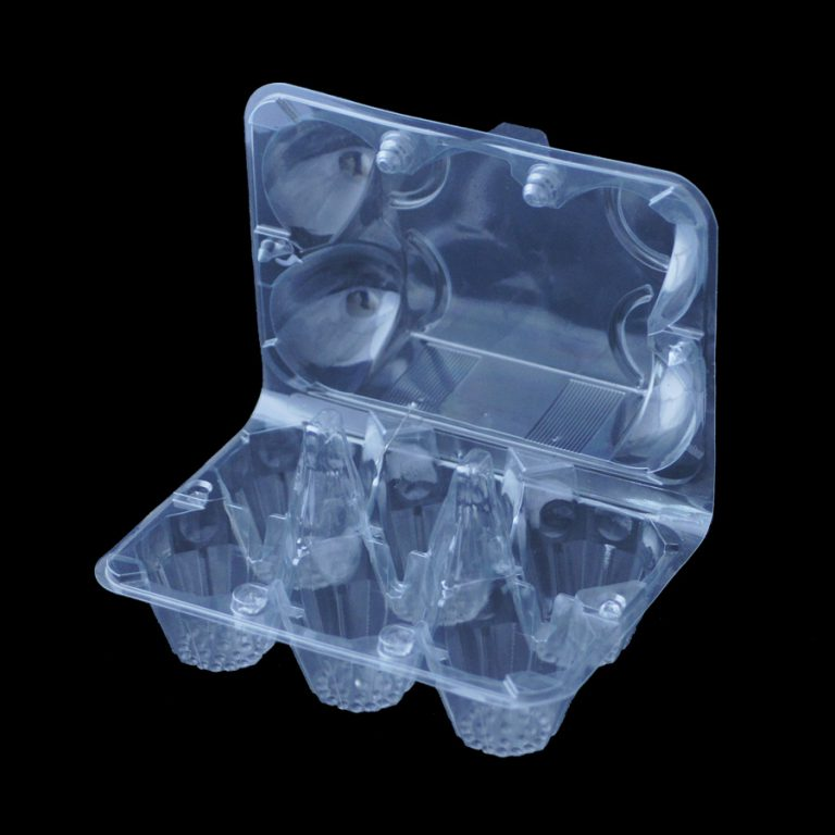 Disposable Plastic Egg Container