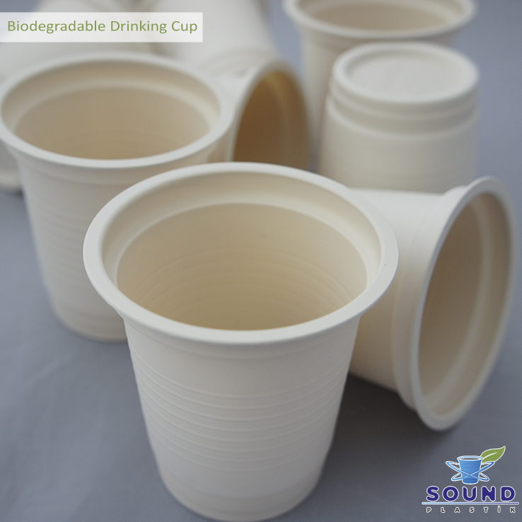 Biodegradable Plastic Cup