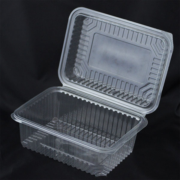 2000cc Disposable Plastic Container