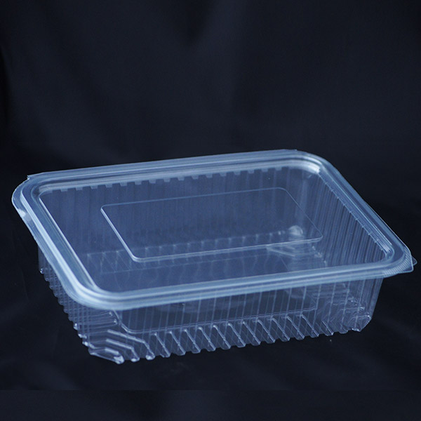 1250cc Disposable Plastic Container