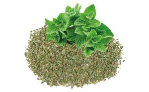 Conventional Dried Oregano Leaves